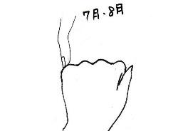 hand-002010.jpg