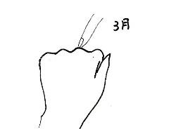 hand-007011.jpg