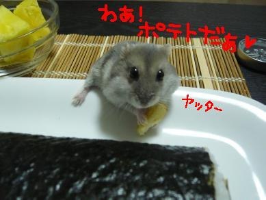 P1080668-5.jpg