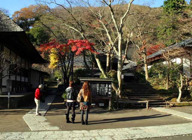 12tukikamakura24