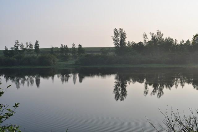静かな湖畔で