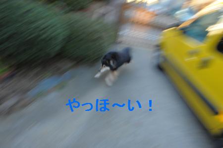 DSC_5503-1.jpg