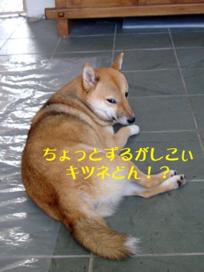 DSC02401_convert_20100706123151.jpg