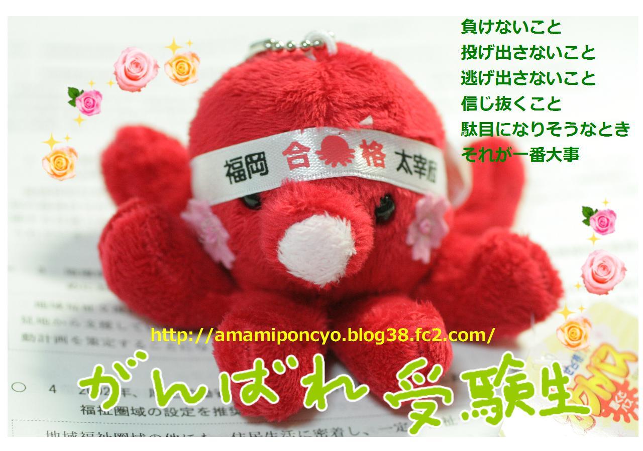 1_20100110104523.jpg