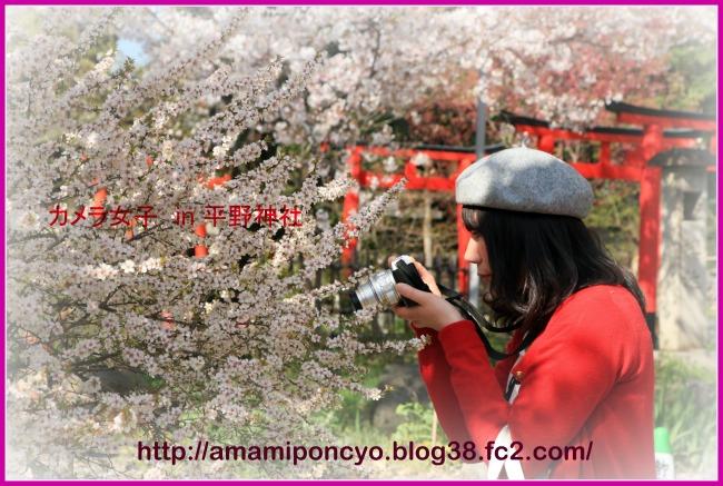 hiranojinjya_20110414075738.jpg
