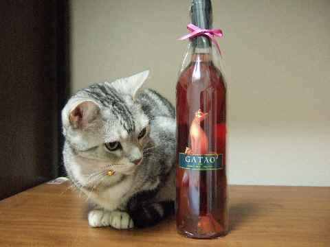 猫ちゃん模様のワイン1