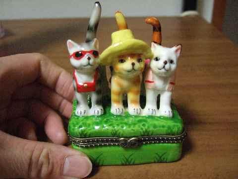サングラスの猫♪