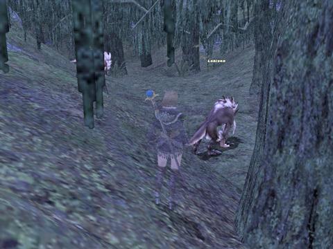ノールが2匹、右の木が伐採ポイント、そっちにも1匹います!