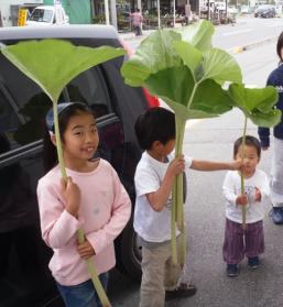 fuki_20100529172223.jpg