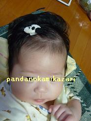 2009081003.jpg