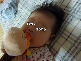 2009091502.jpg