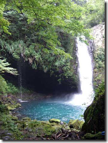 浄連の滝 ジョウレンシダ