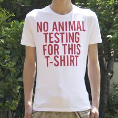 ZARA_T-Shirts_100506.jpg