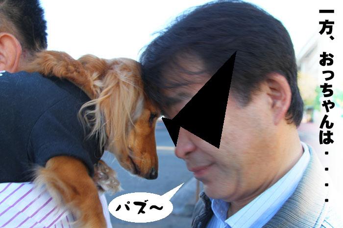 19_20091116001818.jpg