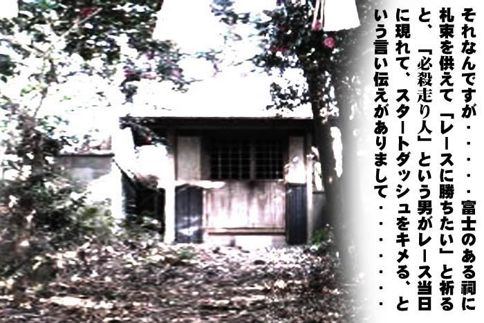41_20100205084554.jpg