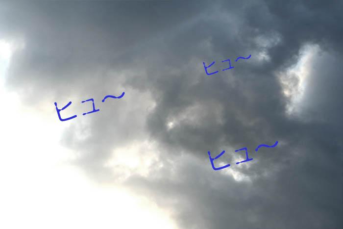 45_20100816194449.jpg