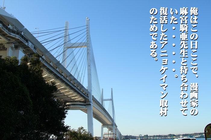 8_20091116001635.jpg