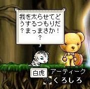 Maple0008_20090110211850.jpg