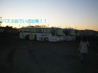 P1111498.jpg