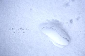 ゆきのあしあと(*よんこ*)