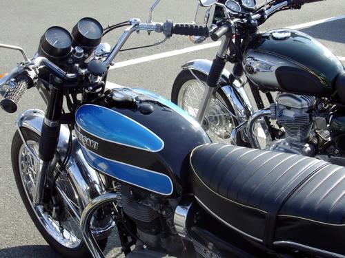 20110125kawasakiw800w1sa01.jpg