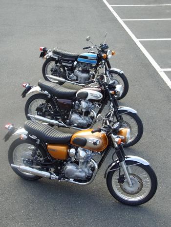 20110125kawasakiw800w1sa03.jpg
