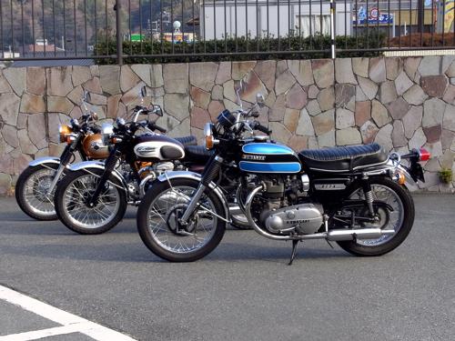 20110125kawasakiw800w1sa04.jpg