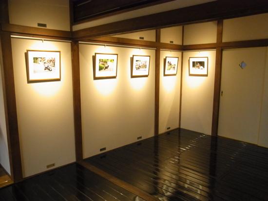 ISOBETAKAO03.jpg