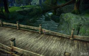 田舎の川は綺麗 ※しかも泳げます!