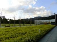 古代出雲歴史博物館の庭