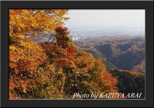 081130takao_kouyou.jpg