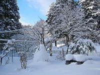 大雪のガーデン