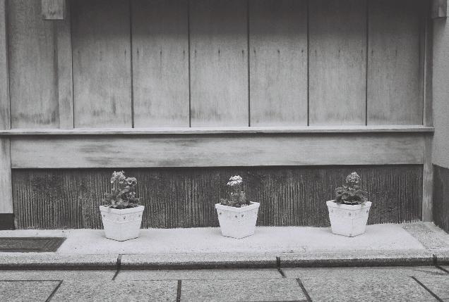 京都 並ぶ