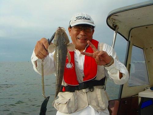 マゴチ、蛸釣り (22)