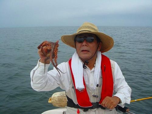 マゴチ、蛸釣り (9)