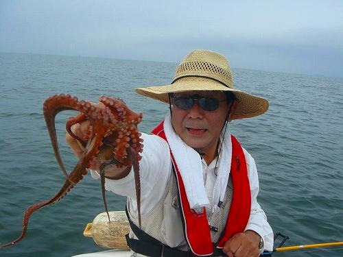 マゴチ、蛸釣り (28)