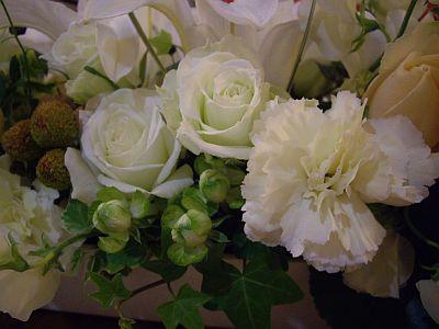 flower2_20101127222522.jpg