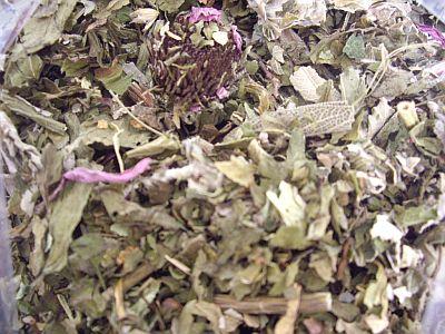 herb02o.jpg