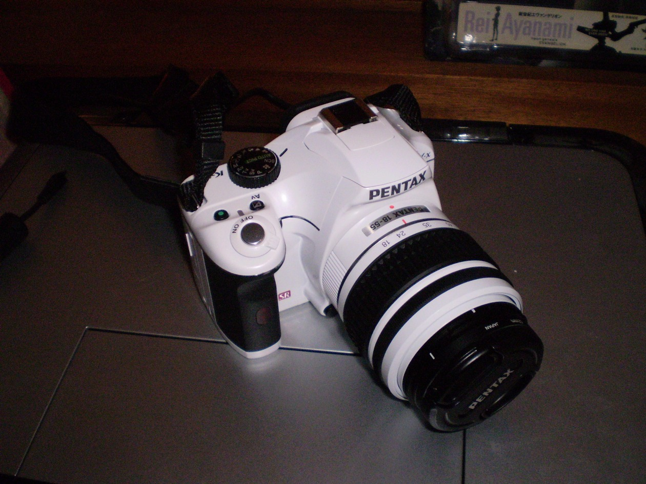 P8190089.jpg