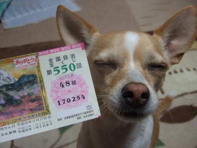 2009_0104西宮戎とタクチン0044