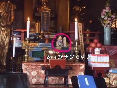 2009_0115あすか☆7歳BD0002-2