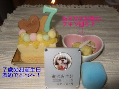 2009_0115あすか☆7歳BD0008-2