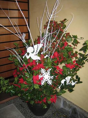クリスマス生け花