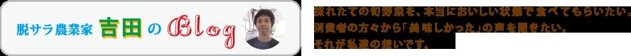 脱サラ農業家 吉田のBlog