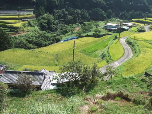090905urayama.jpg