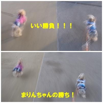 2010012703.jpg