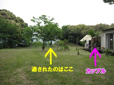 2010051102.jpg