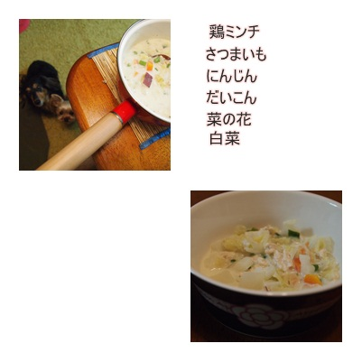 PC013049.jpg