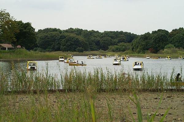 09-9-23-park-028.jpg