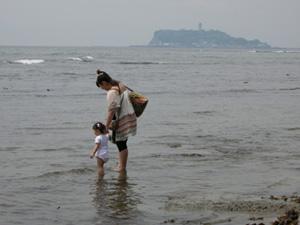 10-5-17-wakame-010.jpg